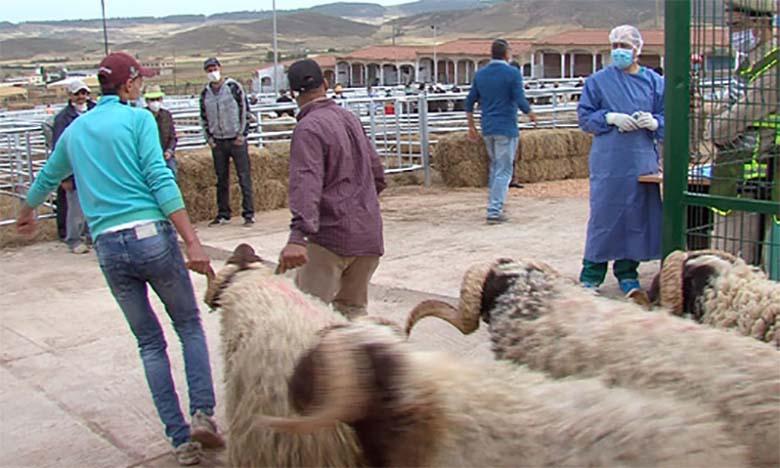 Aïd Al-Adha s'est déroulé dans de bonnes conditions d'hygiène et de santé animale