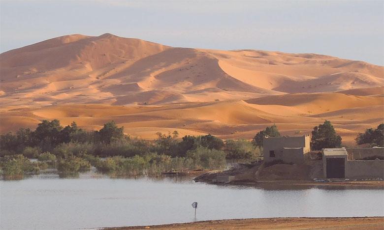 Tourisme dans le désert : Les professionnels lancent un appel de détresse