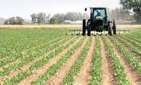 Hydrovore, l'agriculture marocain pèse pour 87% de la consommation annuelle en eau