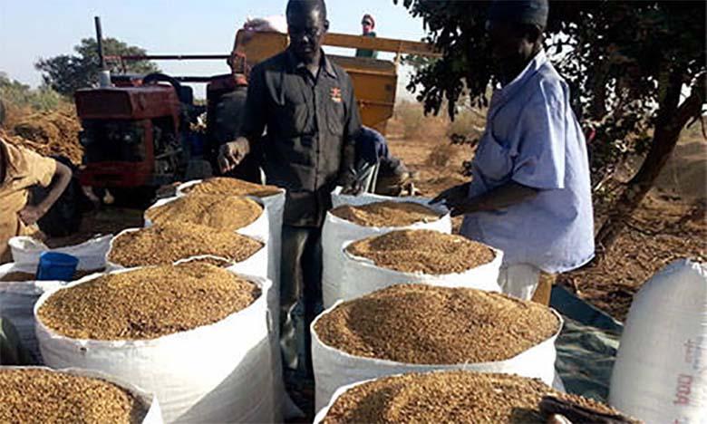 L'OCP et la Banque mondiale s'engagent pour le développement de l'agriculture  en Côte d'Ivoire et au Sénégal