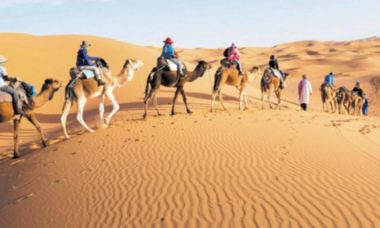 Une plateforme pour mettre en valeur les richesses patrimoniales et culturelles du Sahara