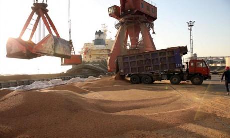ANP: Hausse des importations des céréales de 51% à fin août 2020