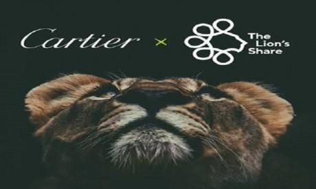 Cartier et Lion's Share Fund  joignent leurs forces pour protéger la nature