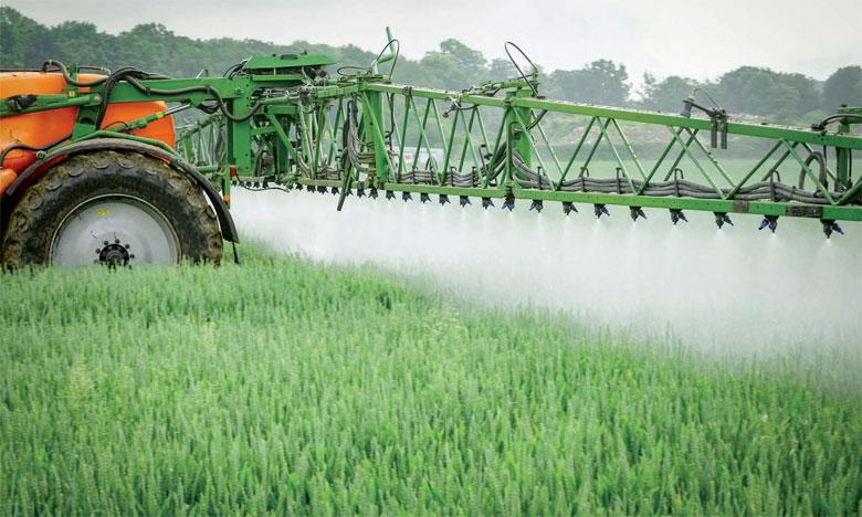 Agriculture sans glyphosate : La stratégie avant-gardiste des Domaines Agricoles