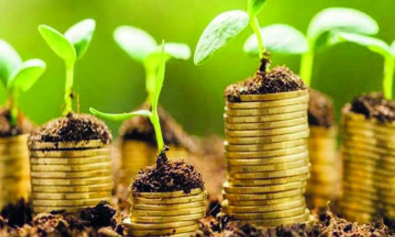 Pour promouvoir les deux programmes, un webinaire vient d'être organisé sur  les investissements verts de la BERD et de l'UE dans le secteur privé marocain.