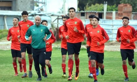 Les Lionceaux s'entraînent à Maâmoura