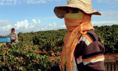 «Salama au travail» entame sa deuxième phase dans le monde rural