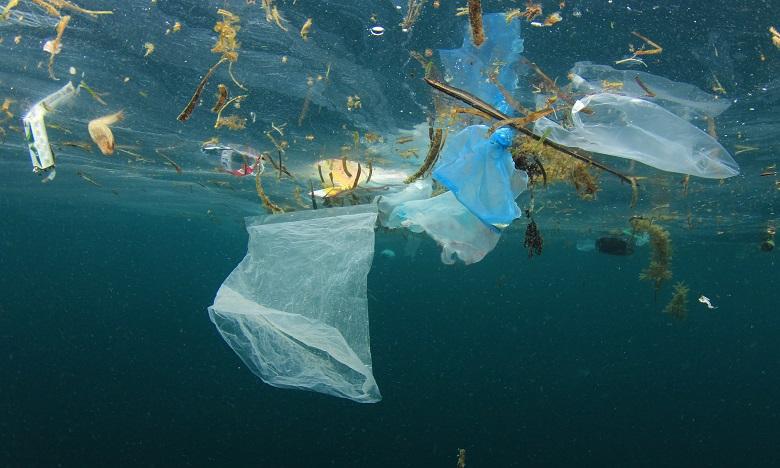 Environnement: Près de 230.000 tonnes de plastique jetés chaque année dans la Méditerranée