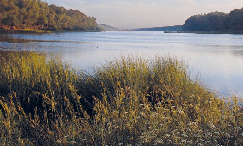 La réserve naturelle de Sidi Boughaba au bord de l'asphyxie