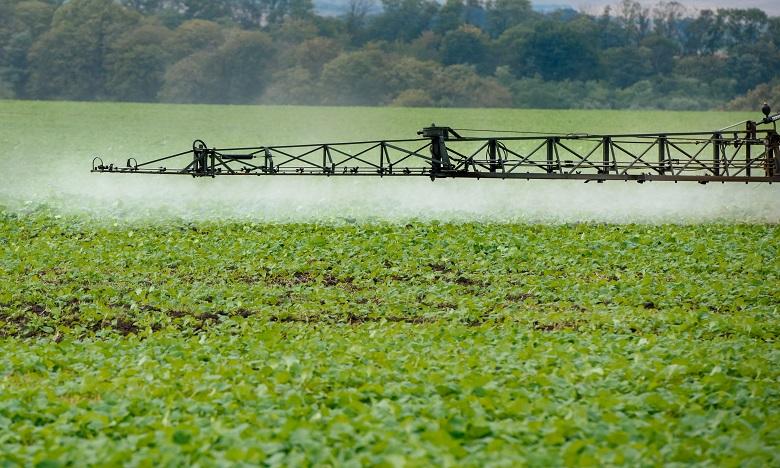 CMGP et Comptoir agricole du Souss opèrent un rapprochement stratégique
