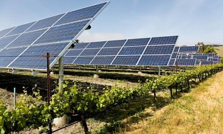 Plus de 200 participants à la première Caravane solaire régionale