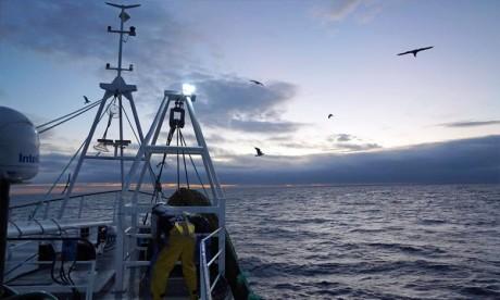 La pêche, «pomme de discorde majeure» dans les discussions post-Brexit