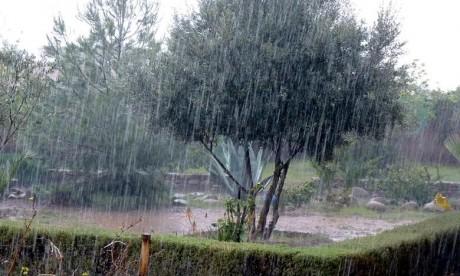 Alerte météo : Fortes rafales de vent attendues jeudi et vendredi dans plusieurs provinces du Royaume