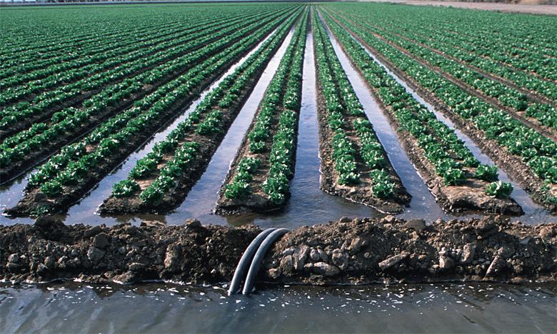 La gestion de l'eau est à l'origine d'une part importante du gap, 60 milliards de DH annuels, entre ce qui est réalisé et les objectifs climatiques à atteindre. Ph. DR