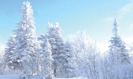 Abondantes chutes de neige, temps froid, rafales de vent et fortes pluies dans plusieurs provinces du Royaume