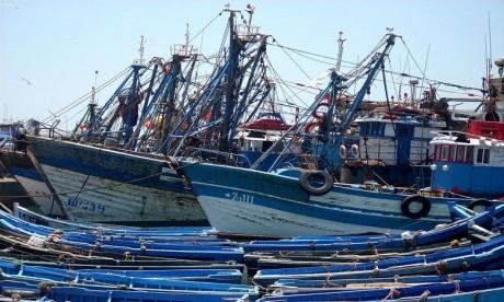 Les petits pêcheurs génèrent moins de 30% des recettes totales. Ph. DR
