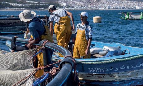 Pêche : Campagne de sensibilisation  à la sécurité maritime