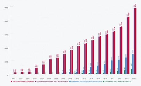 Croissance des entreprises distinguées depuis 2003. (Source CDP)