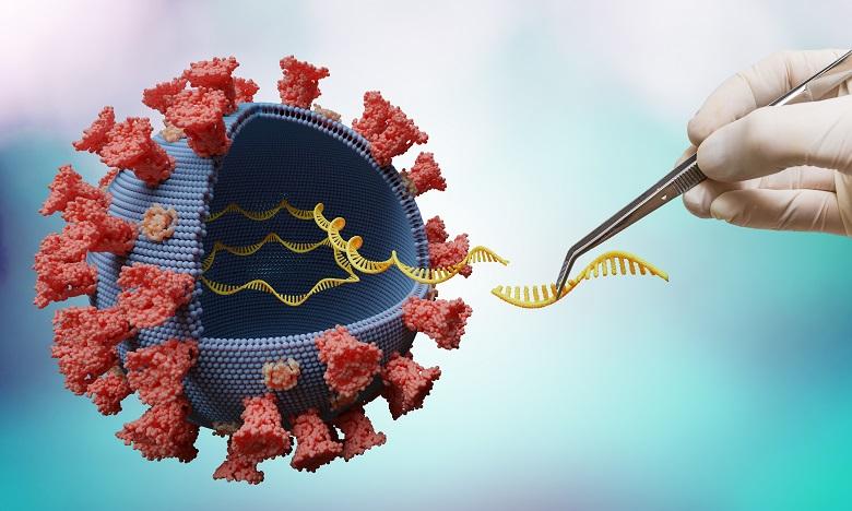 Covid: le séquençage, cet indispensable outil pour traquer le virus