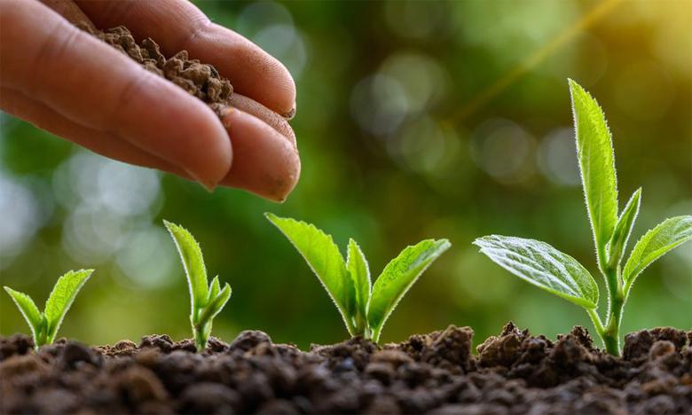 Le Conseil provincial focalisé sur le secteur agricole et éducatif