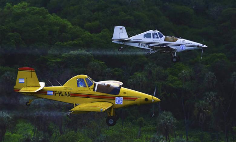 Les 28 appareils de lutte anti-acridienne, qui survolent actuellement la région pour réaliser des pulvérisations, pourraient cesser leurs opérations en mars. Ph. FAO