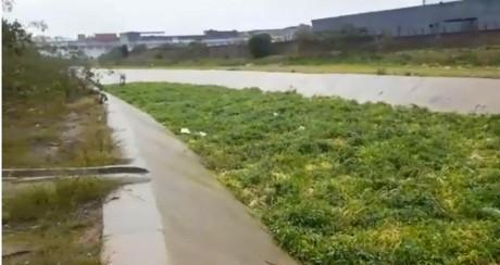 Coloration de l'eau de l'Oued Bouskoura: Lydec s'explique