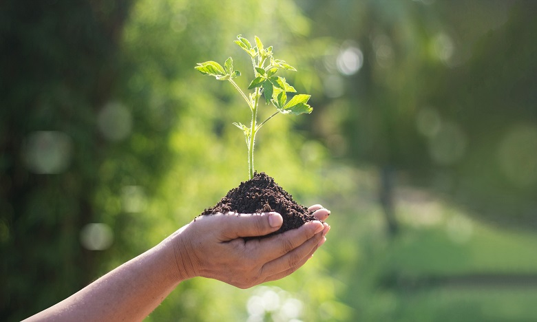 Lancement du concours national «Green Start-up»