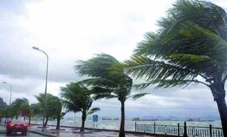 Fortes rafales de vent jusqu'à mardi dans plusieurs provinces du Royaume