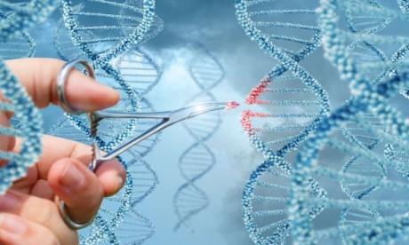 Drépanocytose : Novartis s'allie à la fondation Bill & Melinda Gates