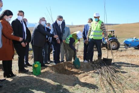 Lancement de plusieurs projets de développement agricole et forestier