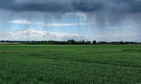 Le volume des précipitations qui se sont abattues sur la région jusqu'au 10 mars a atteint le record de 318 mm.