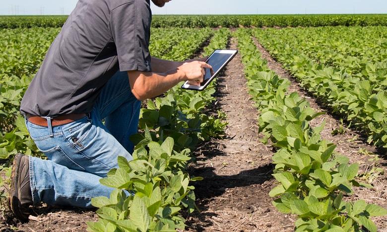 L'OCP et CAM s'allient pour un meilleur accès des agriculteurs aux solutions mobiles de financement