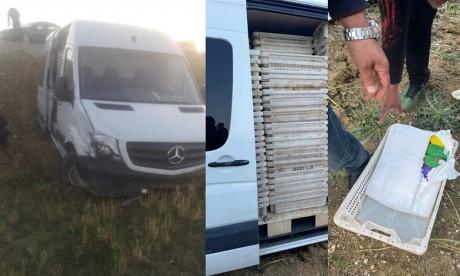 Tétouan: Saisie de plus de 2 tonnes de chira, un individu interpellé