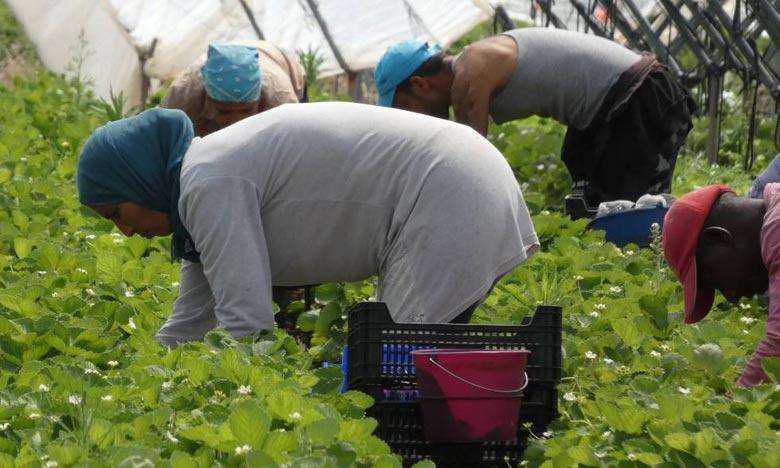 ANAPEC: l'Autonomisation des  travailleuses saisonnières en débat
