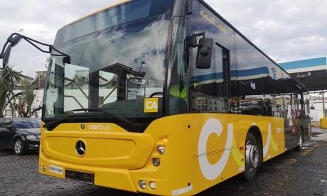 Casabus : la flotte portée à 700 bus dès septembre