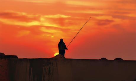 Pêche sportive : Un fort potentiel touristique en quête  de développement