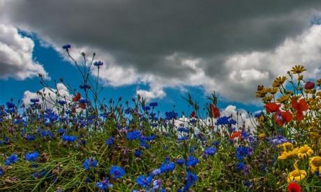Fortes averses orageuses prévues ce dimanche