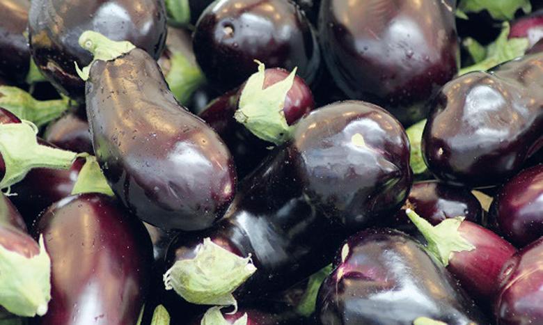 L'étude a identifié, en tout, 6 risques liés à l'importation d'aubergines marocaines.