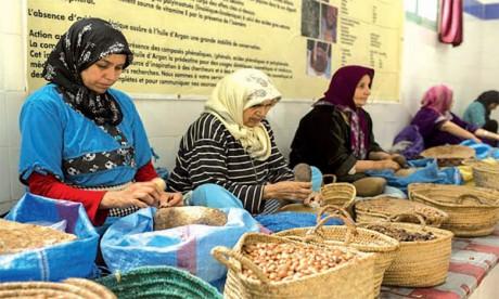 L'Office du développent de la coopération lance le recensement général des coopératives et leurs unions au Maroc