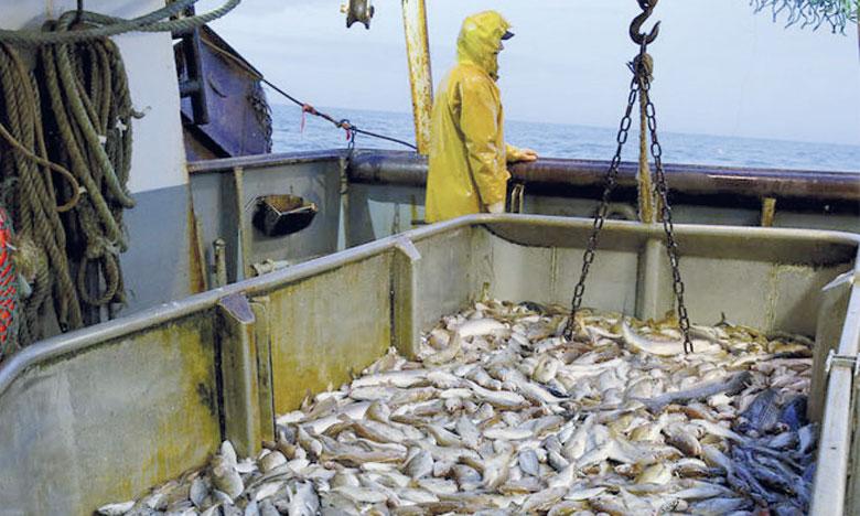 Pêche illicite: accord possible à l'OMC pour interdire des subventions
