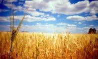 La DGM prévoit pour la journée de ce mercredi, un temps stable avec ciel clair à peu nuageux sur l'ensemble du Royaume. Ph : DR