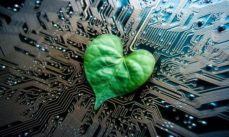Partenariat entre l'UIR et le Cluster solaire en faveur des startups greentech