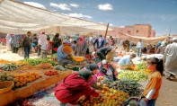 Le CESE émet un avis sur le développement des souks hebdomadaires en milieu rural