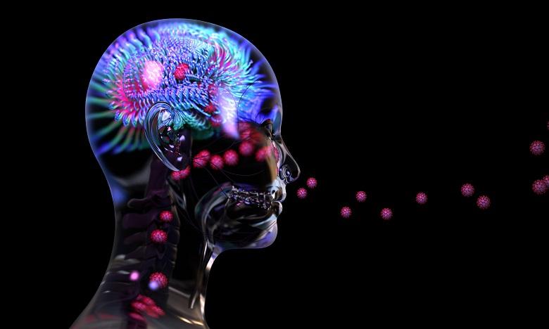 Etude: Le Covid-19 peut infecter les neurones