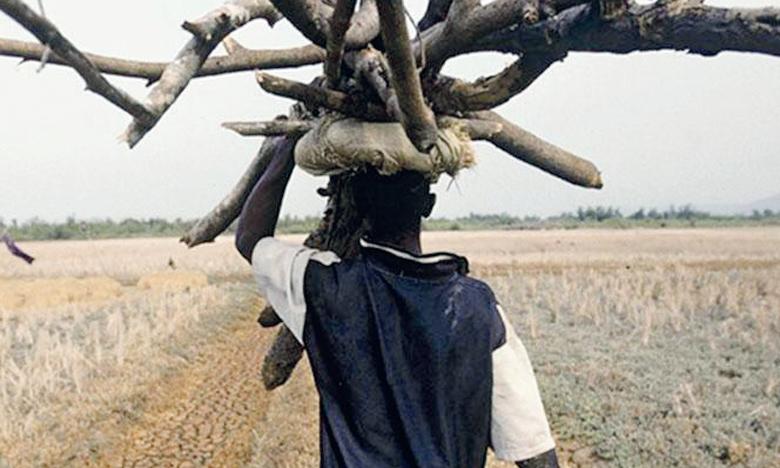 Parmi les 20 pays qui abritent le plus de personnes n'ayant pas accès à des combustibles propres et à des technologies de cuisson sécurisées, dix sont situés en Afrique subsaharienne. Ph. DR
