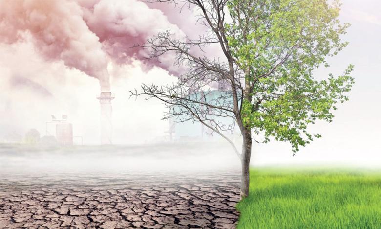 D'ici à 2030, la restauration de 350 millions d'hectares d'écosystèmes terrestres et aquatiques dégradés pourrait générer des services écosystémiques estimés à 9.000 milliards de dollars. Ph. DR