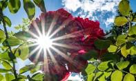 La DGM prévoit pour la journée de ce vendredi, un temps assez chaud à chaud sur le Sud-est et l'extrême Sud du pays. Ph : DR