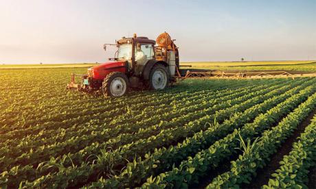 Malgré la persistance de l'état d'urgence sanitaire lié à la Covid-19, l'activité agricole s'est poursuivie de manière normale.