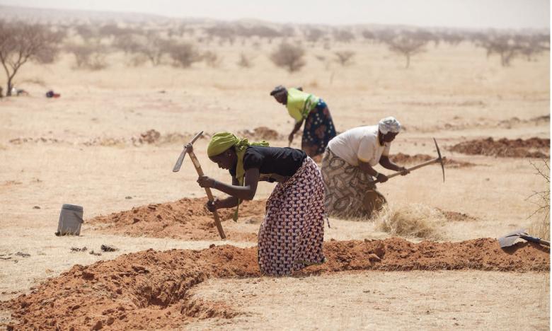 Les personnes vivant dans la pauvreté, les femmes, les populations autochtones sont les premières victimes des dégradations des écosystèmes.  Ph. FAO