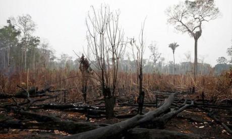 Des scientifiques alertent encore sur l'urgence climatique